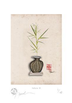 Ikebana III